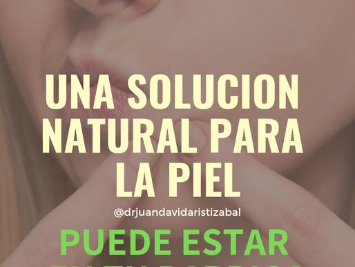 Eje Intestino – Piel: Una solución natural para tu piel puede estar en el intestino (parte 1)
