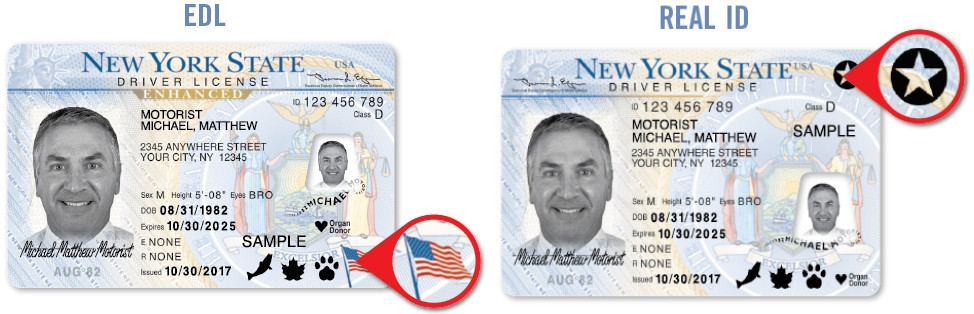 New York Enhanced and real ID driver license
