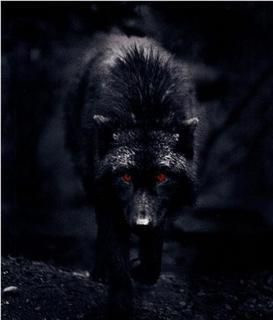 The Legend of Black Shuck