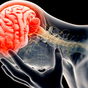Nutrition and the Connection to Healthy Brain Function