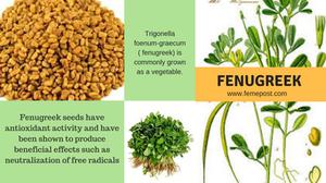 Benefits of Fenugreek