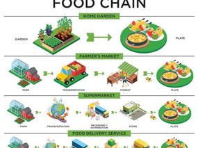 Reimagining Resilient and Equitable Urban Food Systems – Building Back Better Post-Covid-19