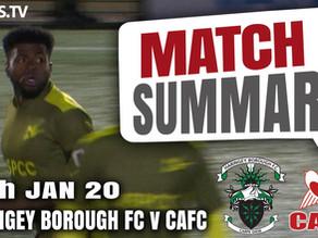 Match summary - Haringey Borough