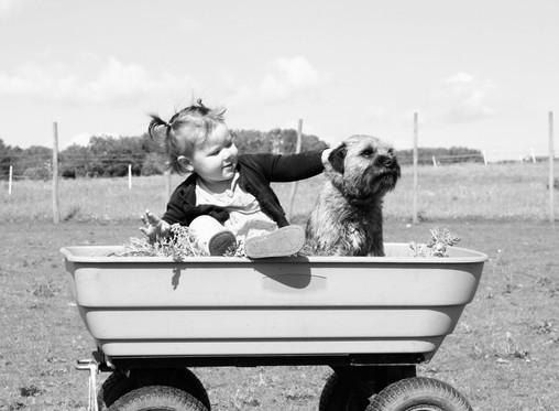 Како науката го објаснува пријателството помеѓу човекот и кучето