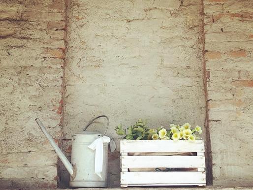 Home Decor: Riutilizzo Creativo, Junk And Shabby Style.