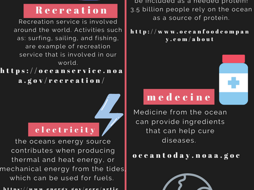 INfo-Graphic on Ocean services