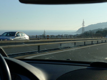 Nice and Monte Carlo