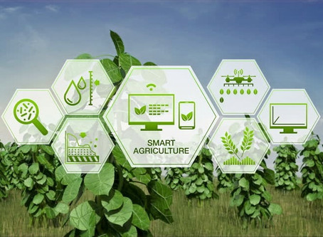 Smart Farming: 5 Amazing Uses for IoT Technology in Agriculture