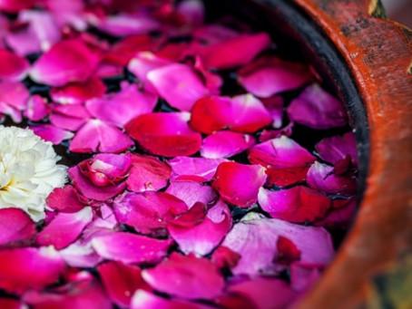 Rasa Dhatu - Das Ursüppchen unserer Lebenskraft