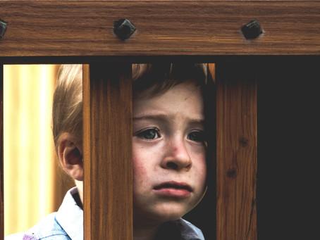 Acerca de los limites: Educacion o adoctrinamiento?