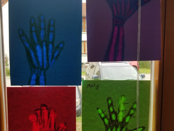 Skeleton Hands in Science