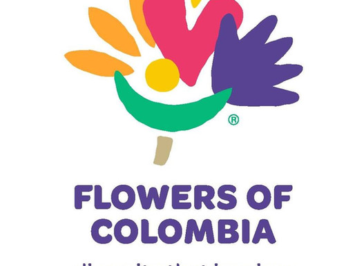 The Flowers of Colombia – Bringing Flowers Into Your Life Everyday!