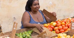 """Article (traduction automatique) """"Une journée avec de l'argent à Cuba"""""""