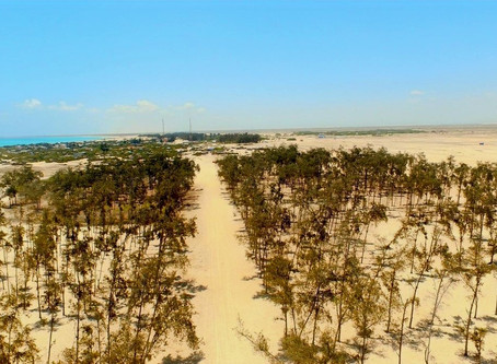 Top 5 Best Beaches in Somalia - Somger