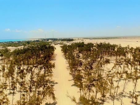 Top 5 Best Beaches in Somalia