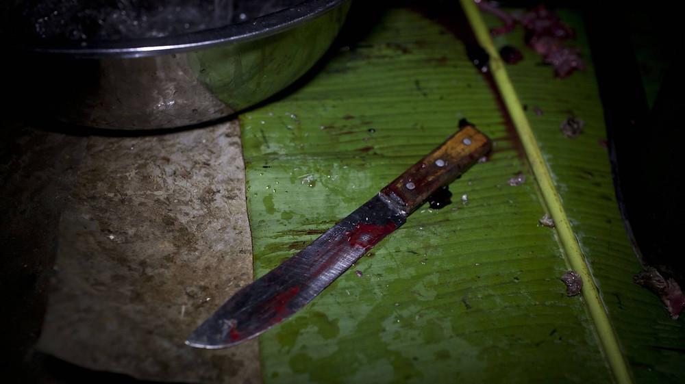 Machete utilizado para despellejar al puercoespín, un ejemplo de las condiciones en las que se manipulan estos alimentos.