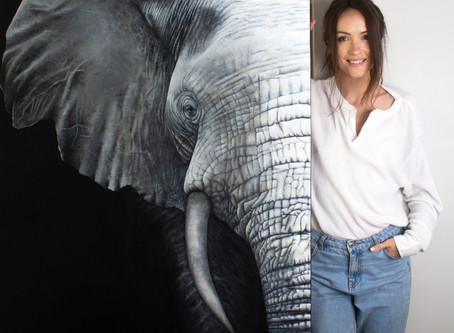 The Elephant in the Room: The Finishing Touches