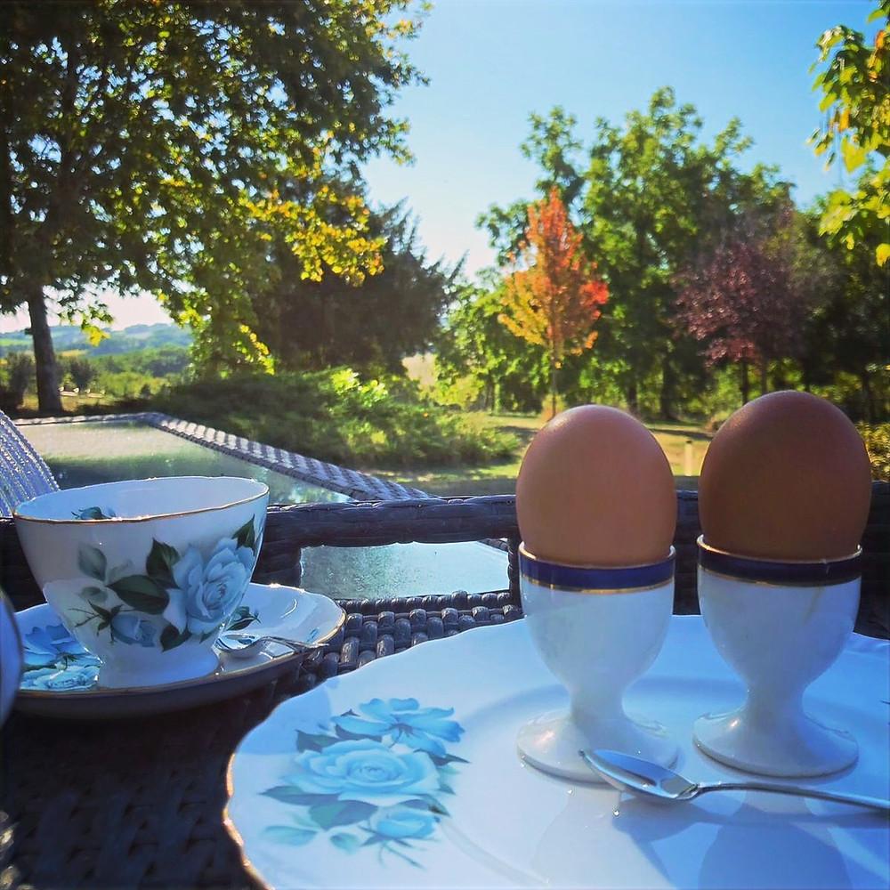 Fresh eggs for breakfast