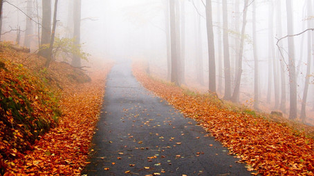 Faith to Follow - October 2020