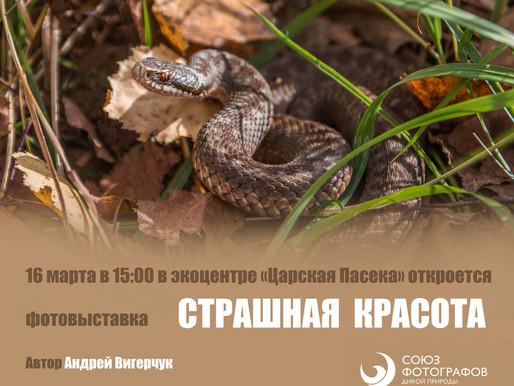 Открытие фотовыставки Андрея Вигерчука «Страшная красота»