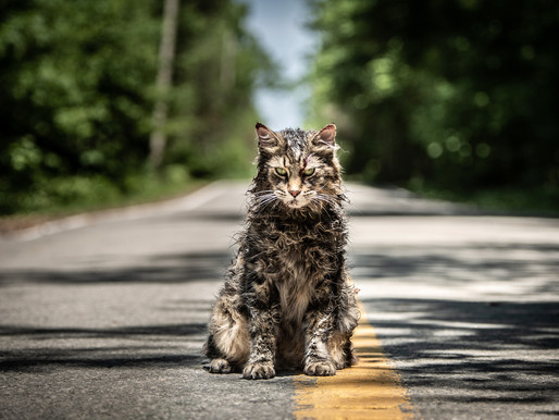 Pet Sematary film review