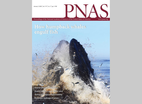New publication in PNAS