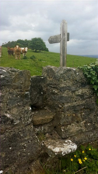 I was so delighted to see a stile built into the stone wall, and a signpost inviting us to visit the site, even though it was clearly on private land