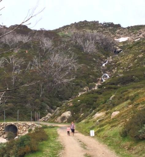 Merrits Traverse Hike Thredbo