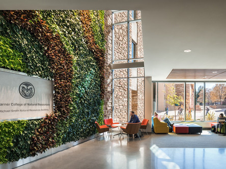 Pinkard and 4240's Michael Smith Natural Resources Building Wins Best Project from ENR