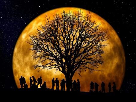 Full Moon Report