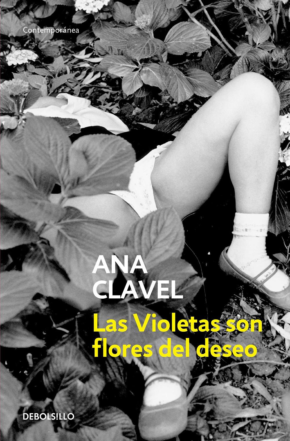 Las Violetas son flores del deseo by Ana Clavel : the book slut book reviews thebookslut