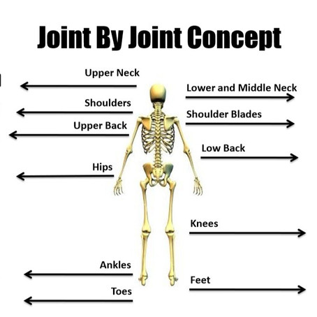 The Joint By Joint Approach: Functional Body Organization