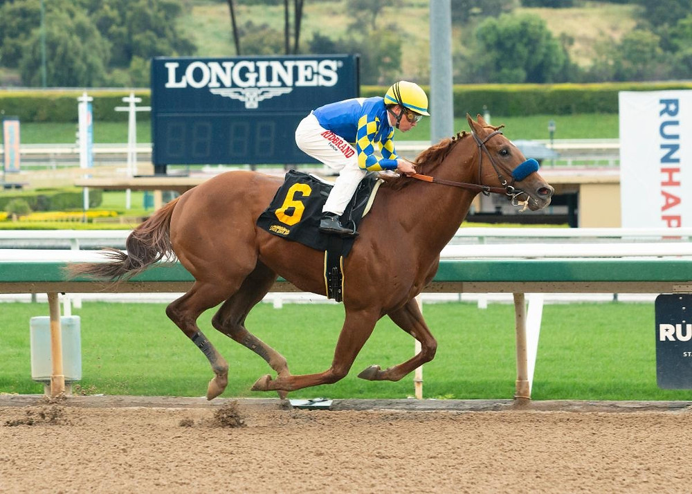 Charlatan running in Arkansas Derby for Kentucky Derby points