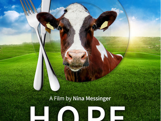 H.O.P.E What You Eat Matters indie film review