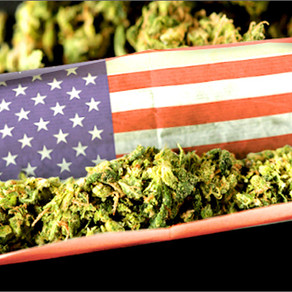 Americans support federal bill to shield legal cannabis states: new poll