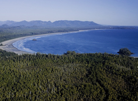 Travel tips for a Tofino adventure Canada. Great eats and accommodations for travellers