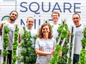 Square Mile Farms: Our Journey So Far!