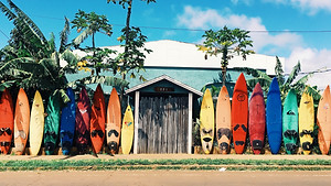 colourful surfboards standing off the beach in Maui, Hawaii