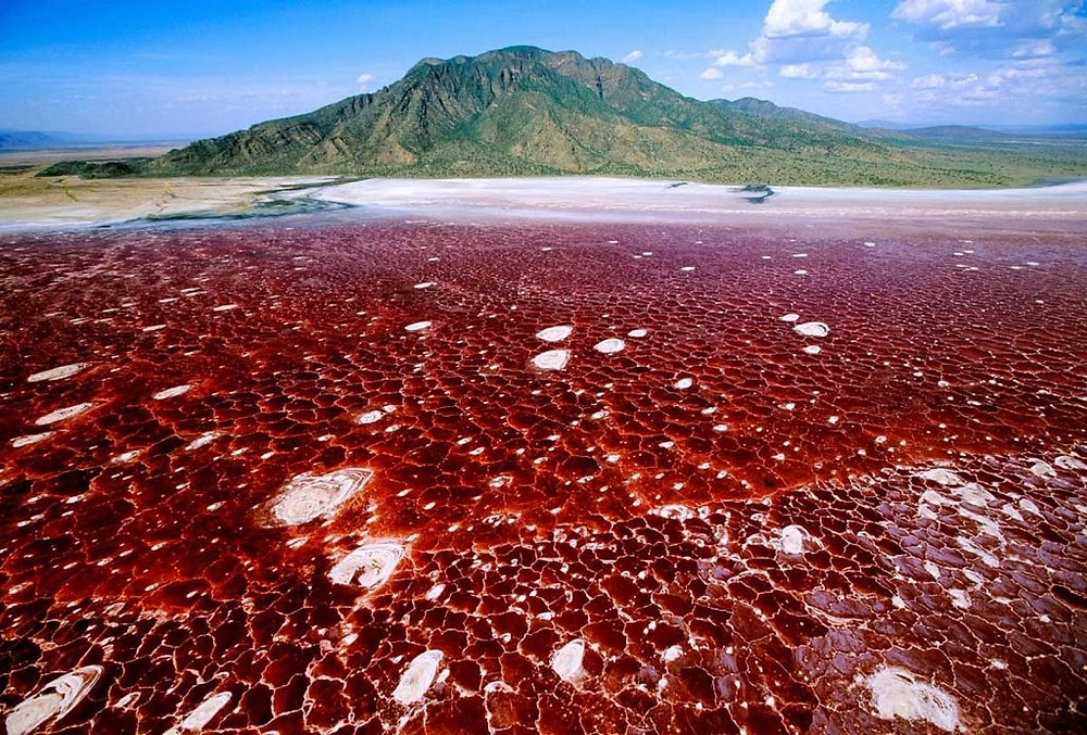 Le Lac Natron en Tanzanie rouge