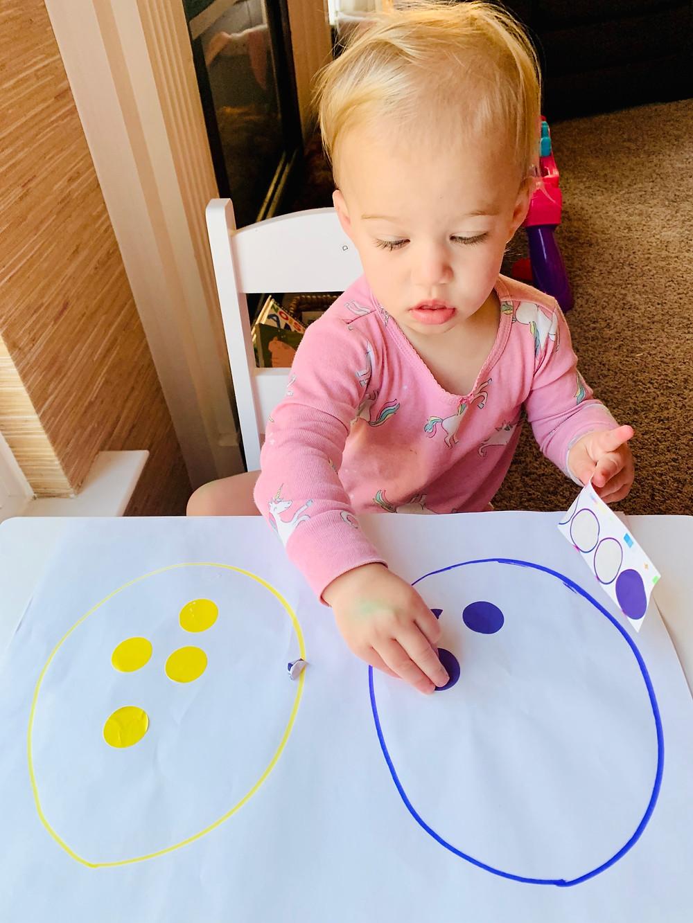 toddler color recognition color sort