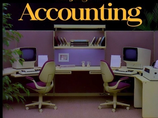 The Jungle of Accounting short film review