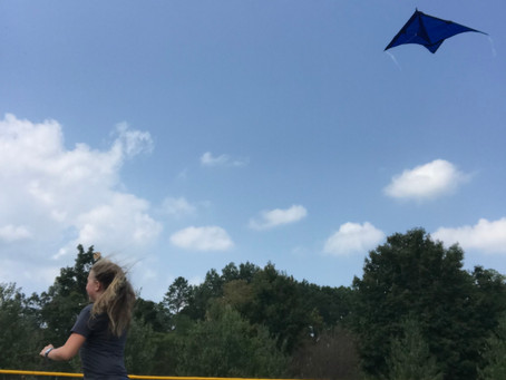 MS Sci & Engineering: Go Fly a Kite!
