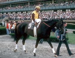 The Mighty Forego