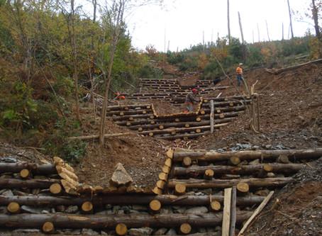 L'impatto degli studi geologici sulla progettazione di un edificio civile