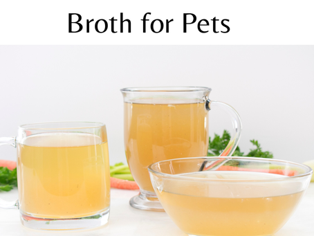 The Benefits of Bone Broth For Pets