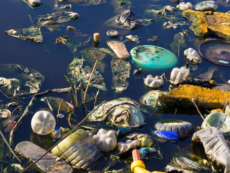 8 Tipps um den Plastikmüll in unseren Meeren zu reduzieren