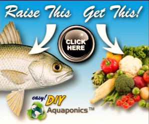 DIY AQUAPONICS This is a new product for people that would like to build their own food !!!