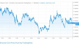 Binance Coin (BNB) price returns to $22