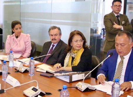 Proyecto de reforma a la Ley de Desarrollo de Puerto Bolívar no recoge propuesta inicial