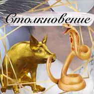 Ноябрь - месяц столкновения Змеи и Свиньи по китайскому гороскопу